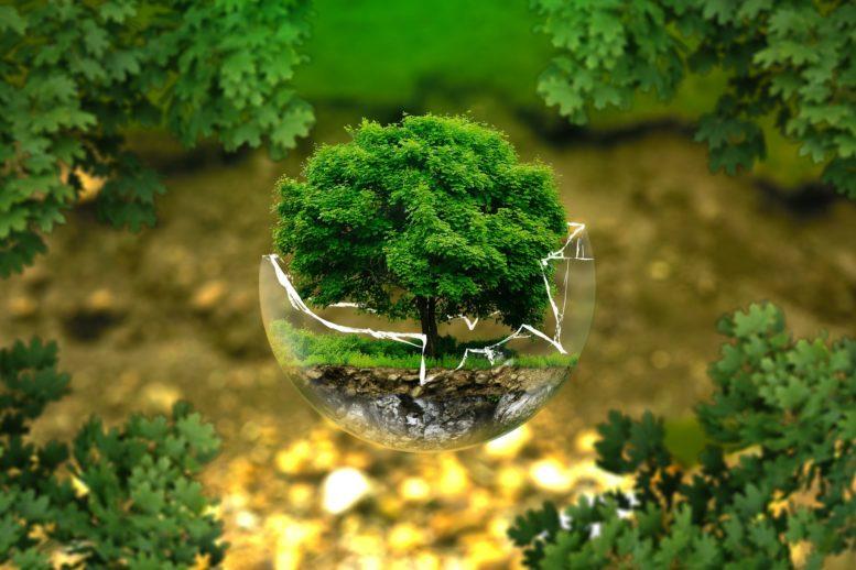 Menneskeskapte miljøproblemer